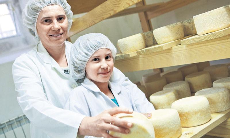 U županiji ima oko 3000 poljoprivrednih gospodarstava/Nel Pavletić/PIXSELL